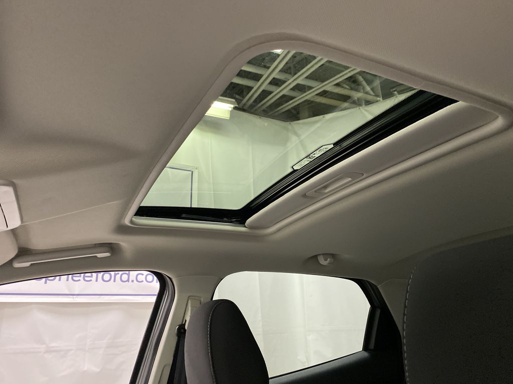 Silver[Moondust Silver Metallic] 2020 Ford EcoSport Sunroof Photo in Dartmouth NS