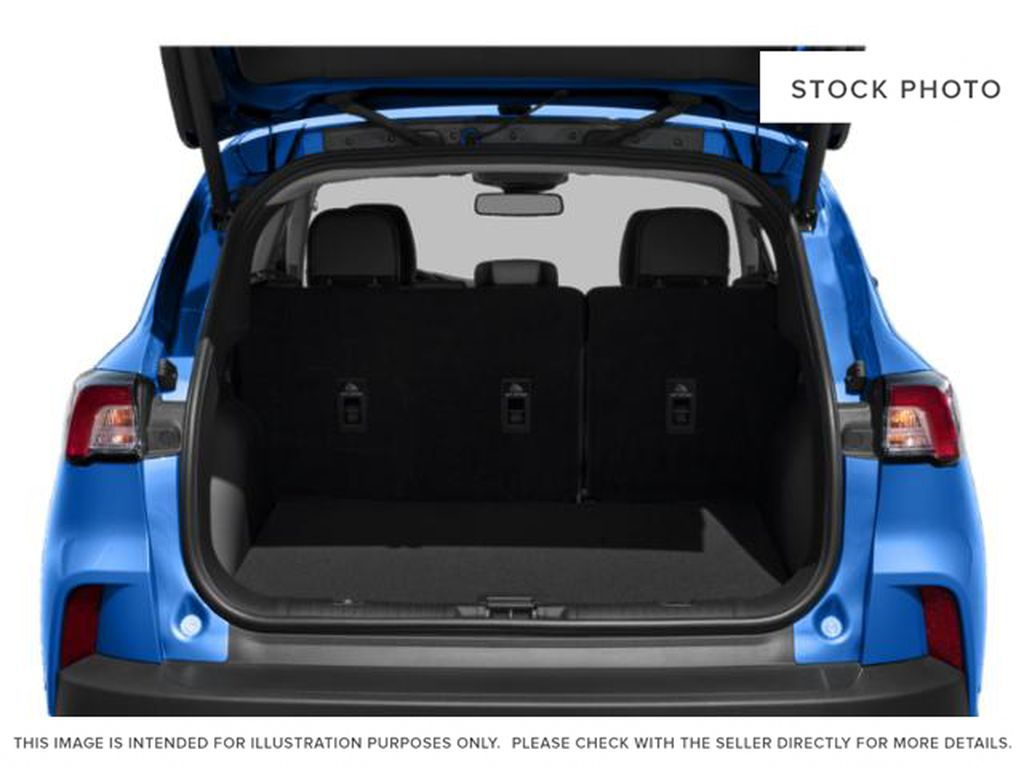 MAGNETIC 2020 Ford Escape Trunk / Cargo Area Photo in Dartmouth NS