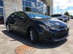 Black[Black Sand Pearl] 2020 Toyota Corolla LE Standard Package BPRBLC AM Right Front Corner Photo in Brampton ON