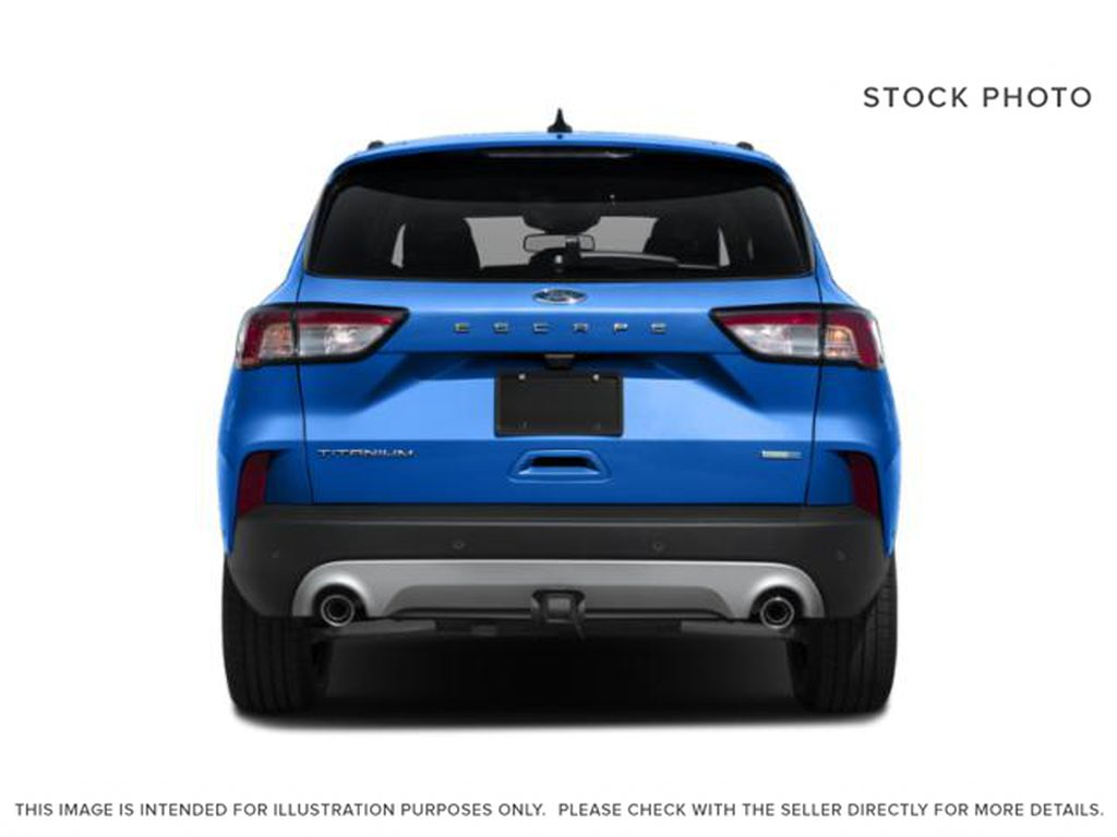 Red[Rapid Red Metallic Tinted Clearcoat] 2020 Ford Escape Rear of Vehicle Photo in Dartmouth NS