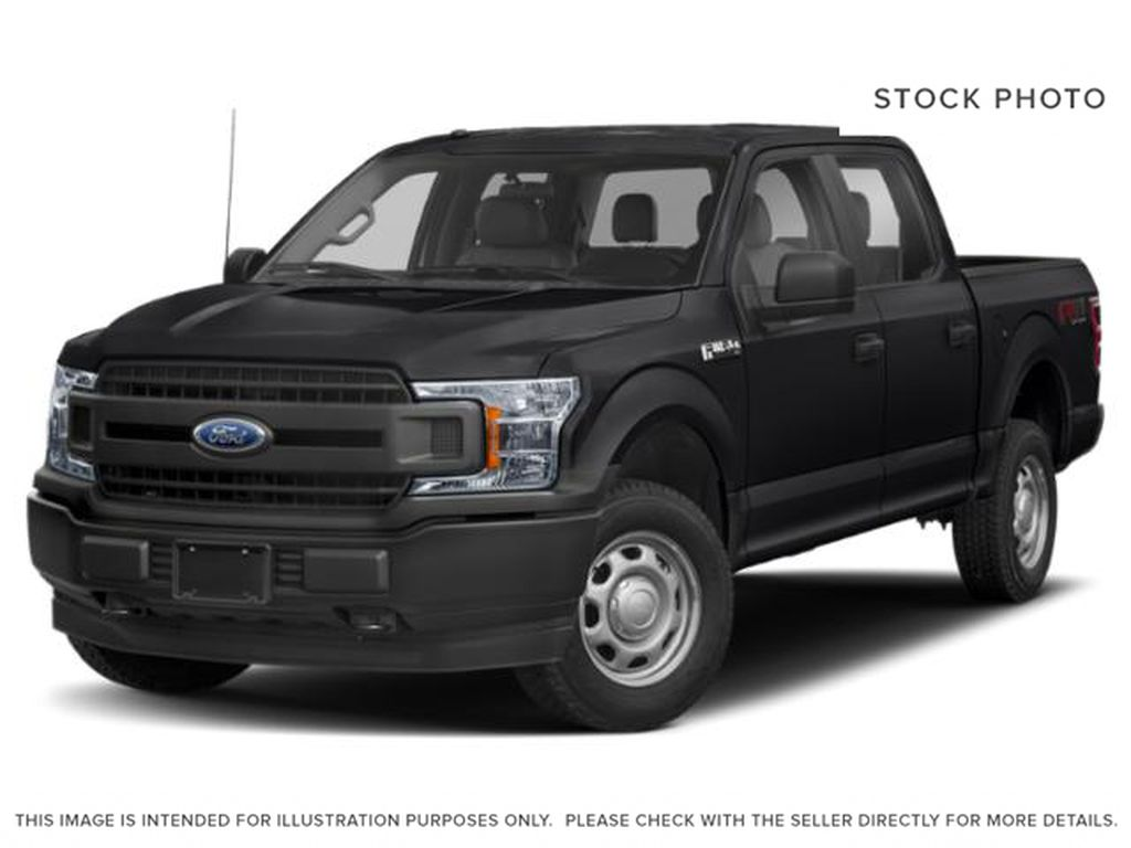 Black[Agate Black] 2019 Ford F-150