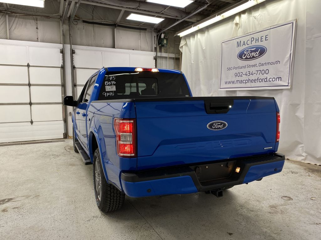 Blue[Velocity Blue] 2020 Ford F-150 Rear of Vehicle Photo in Dartmouth NS