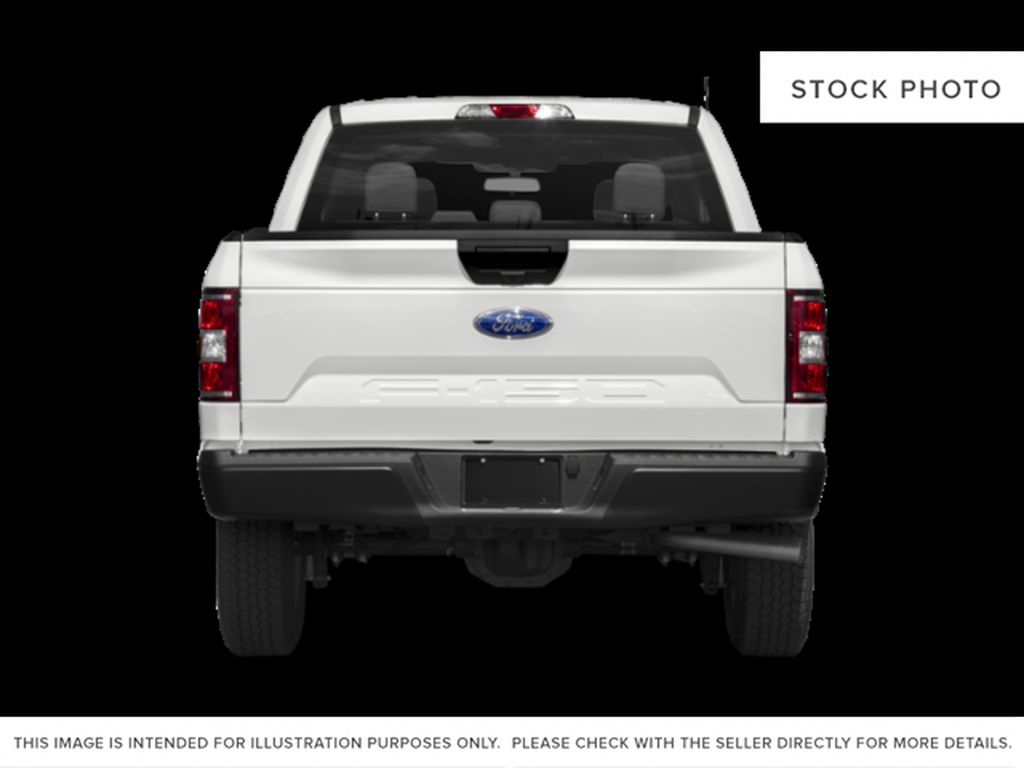 Silver[Iconic Silver] 2020 Ford F-150 Rear of Vehicle Photo in Dartmouth NS