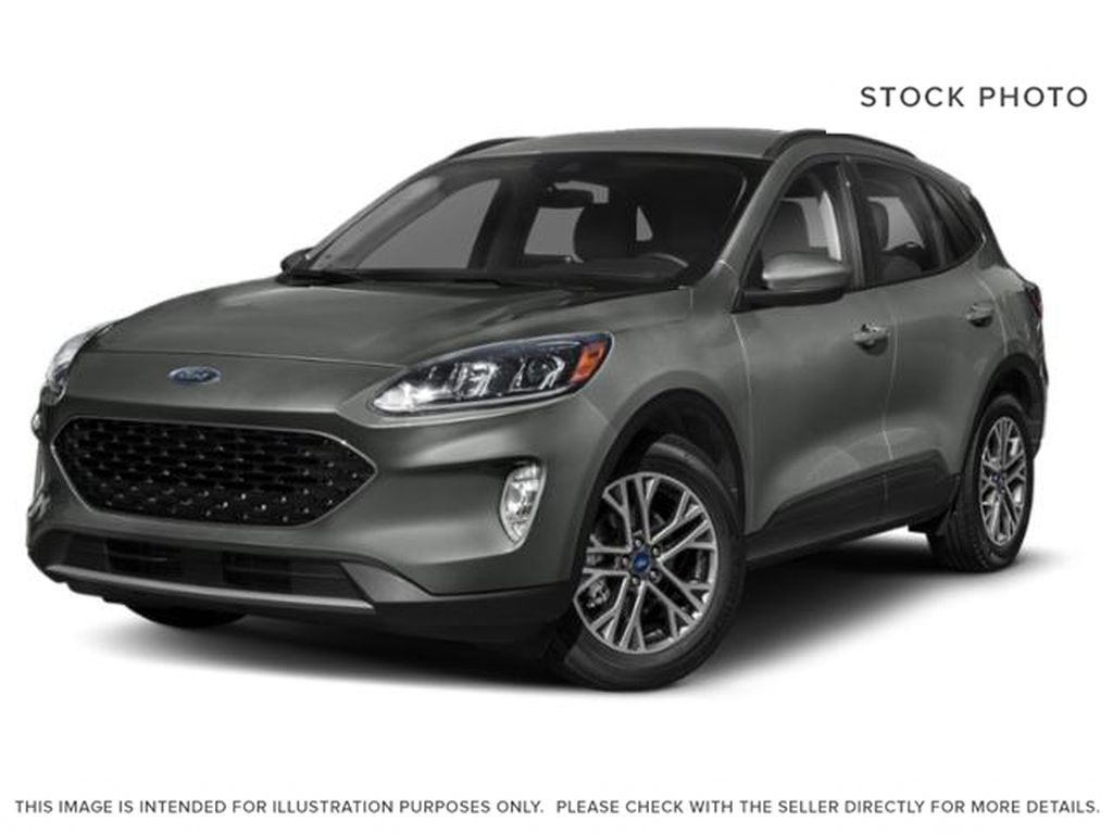 Gray[Magnetic Metallic] 2020 Ford Escape
