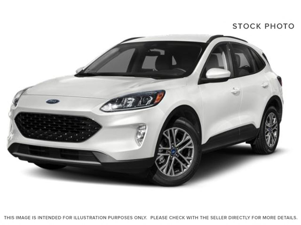 White[Oxford White] 2020 Ford Escape