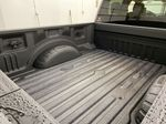 Silver[Iconic Silver Metallic] 2020 Ford Super Duty F-350 SRW Trunk / Cargo Area Photo in Dartmouth NS