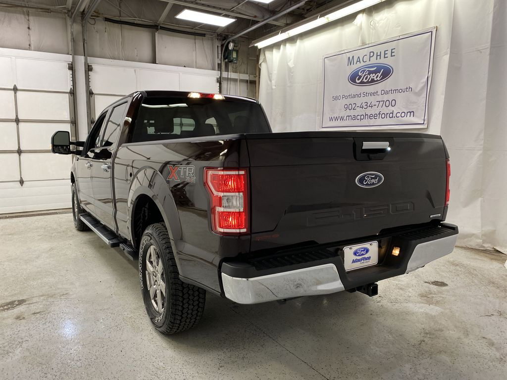 Red[Magma] 2020 Ford F-150 Rear of Vehicle Photo in Dartmouth NS