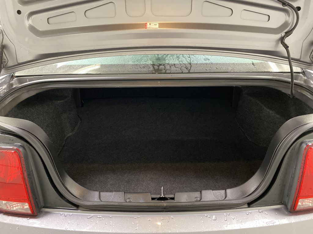 2006 Ford Mustang Trunk / Cargo Area Photo in Dartmouth NS