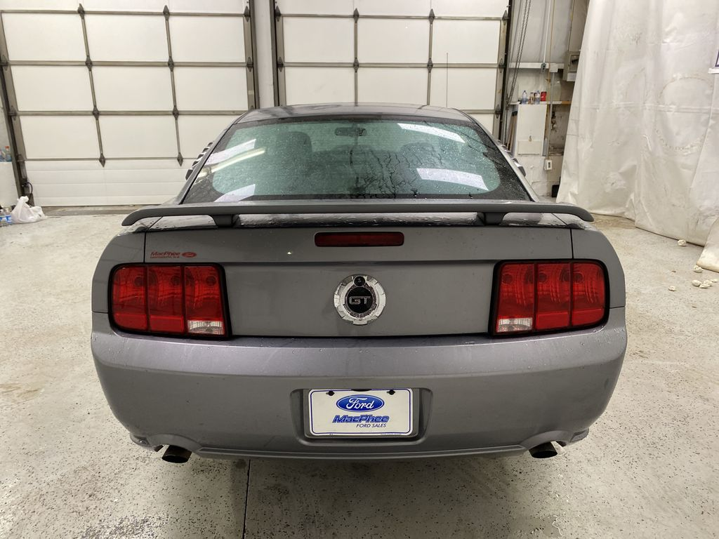 2006 Ford Mustang Rear of Vehicle Photo in Dartmouth NS