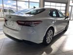 Wind Chill 2020 Toyota Camry Hybrid XLE Rear of Vehicle Photo in Edmonton AB