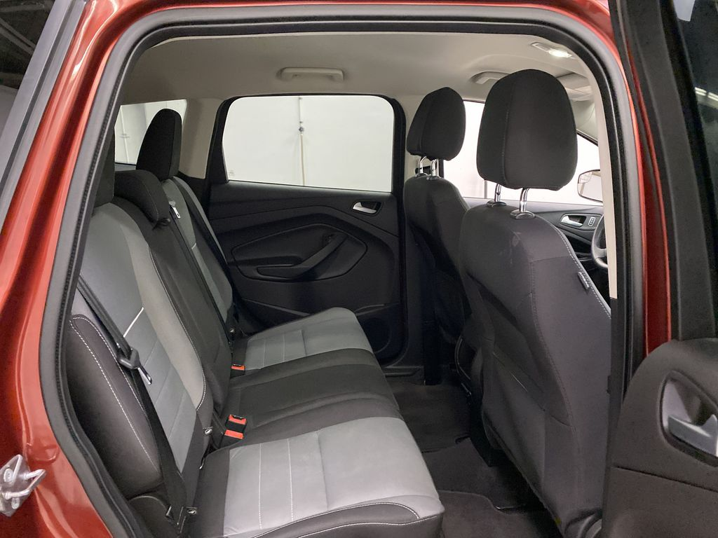 Orange[Sunset] 2014 Ford Escape Right Side Rear Seat  Photo in Dartmouth NS