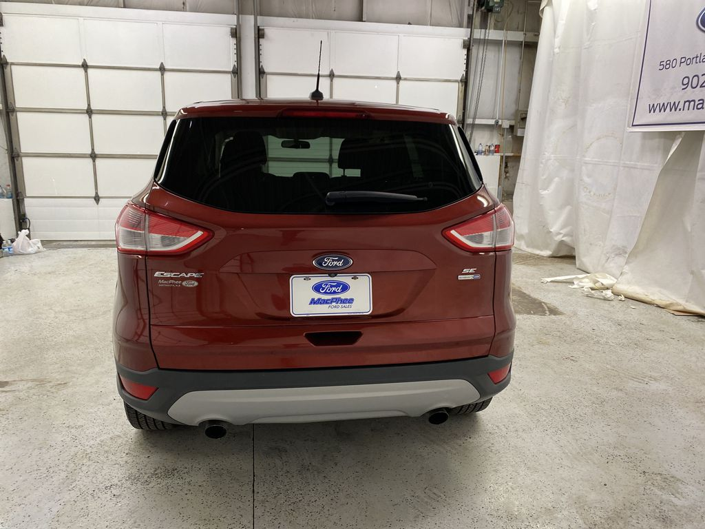 Orange[Sunset] 2014 Ford Escape Rear of Vehicle Photo in Dartmouth NS