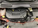 Orange[Sunset] 2014 Ford Escape Engine Compartment Photo in Dartmouth NS