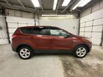 Orange[Sunset] 2014 Ford Escape Right Side Photo in Dartmouth NS