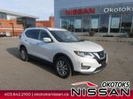 2019 Nissan Rogue Primary Listing Photo in Okotoks AB