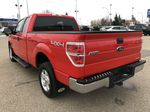 Red[Race Red] 2014 Ford F-150 Left Rear Corner Photo in Edmonton AB