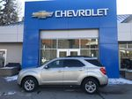 Gold[Champagne Silver Metallic] 2013 Chevrolet Equinox Left Side Photo in Canmore AB