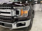 Red[Magma] 2020 Ford F-150 Left Front Head Light / Bumper and Grill in Dartmouth NS