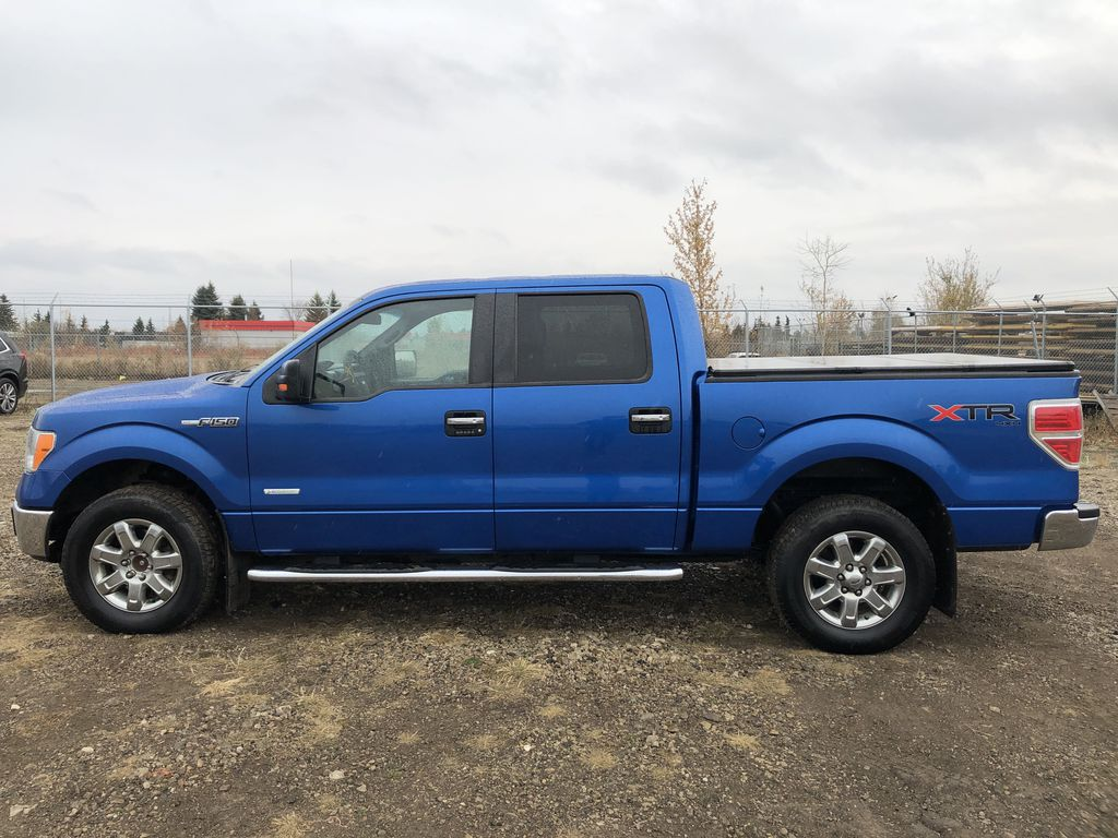 Blue[Blue Flame] 2014 Ford F-150 Left Side Photo in Edmonton AB