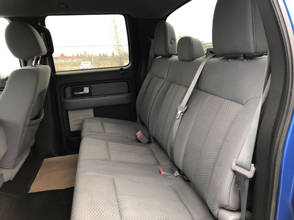 Blue[Blue Flame] 2014 Ford F-150 Left Side Rear Seat  Photo in Edmonton AB