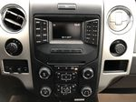 Blue[Blue Flame] 2014 Ford F-150 Central Dash Options Photo in Edmonton AB