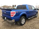 Blue[Blue Flame] 2014 Ford F-150 Right Rear Corner Photo in Edmonton AB
