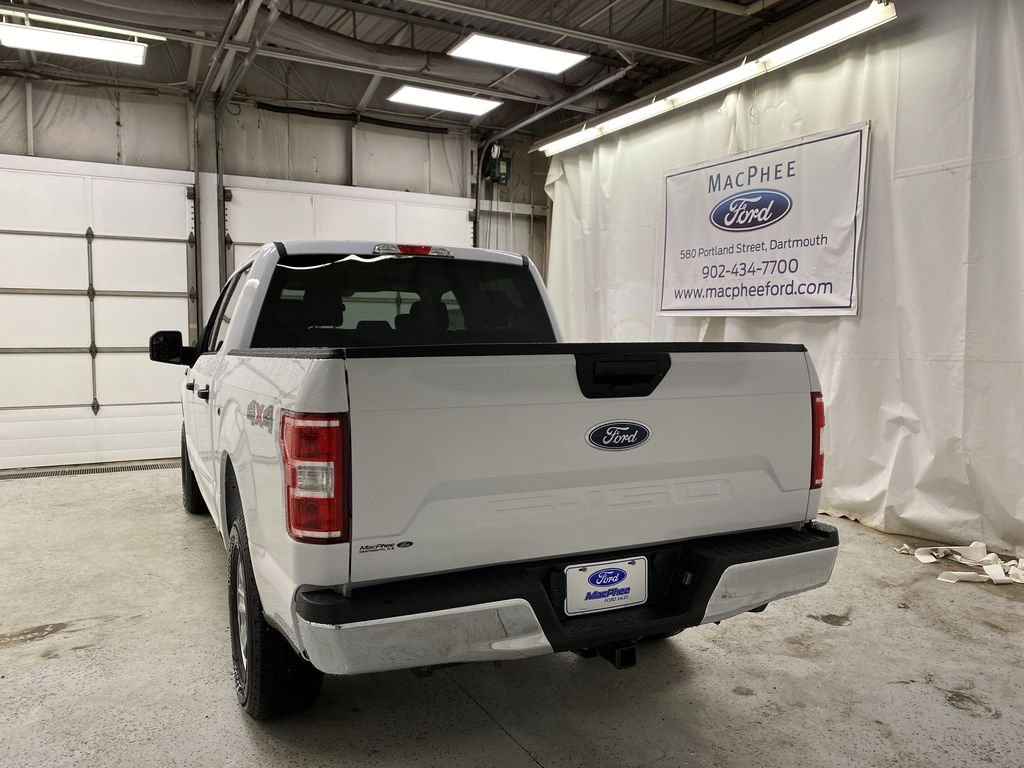 White[Oxford White] 2020 Ford F-150 Rear of Vehicle Photo in Dartmouth NS