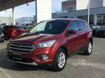 Red[Ruby Red Metallic Tinted Clearcoat] 2017 Ford Escape SE Left Front Corner Photo in Kelowna BC