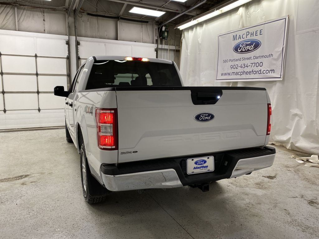 White[Oxford White] 2019 Ford F-150 Rear of Vehicle Photo in Dartmouth NS