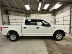 White[Oxford White] 2019 Ford F-150 Right Side Photo in Dartmouth NS