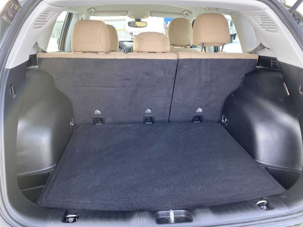 Green[Olive Green Pearl] 2019 Jeep Compass Trunk / Cargo Area Photo in Edmonton AB