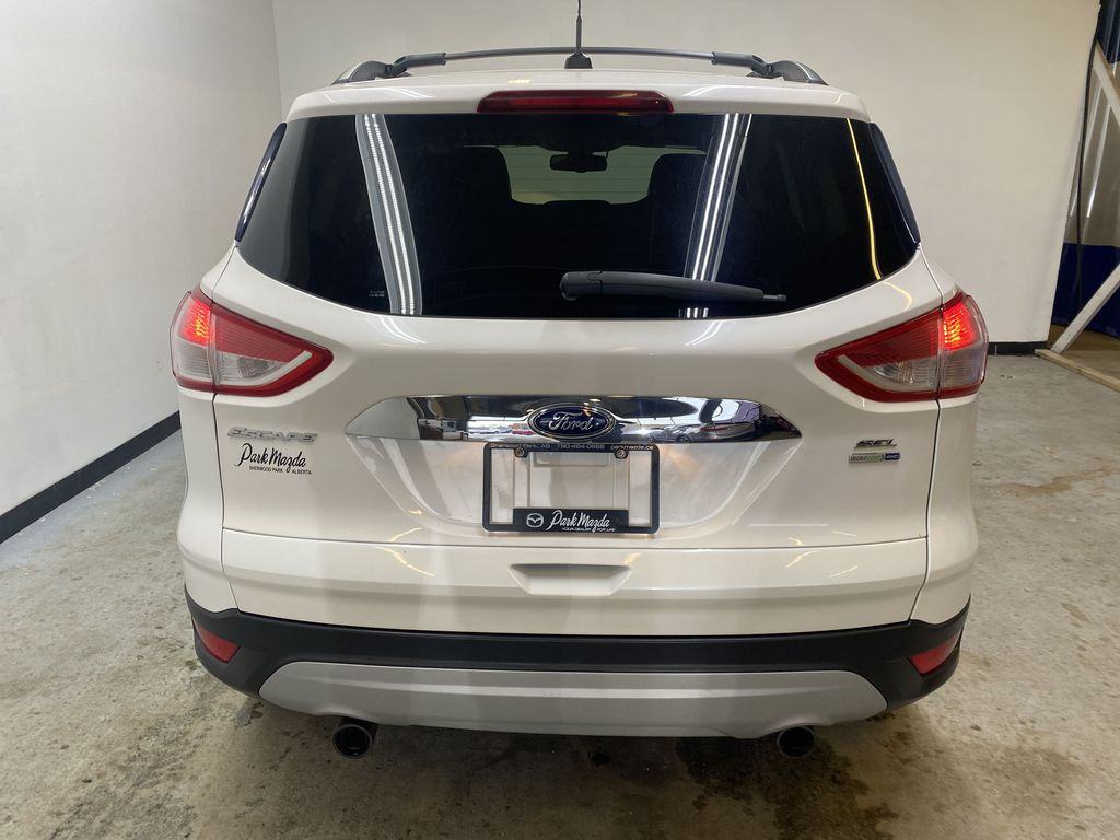 WHITE 2013 Ford Escape Rear of Vehicle Photo in Edmonton AB