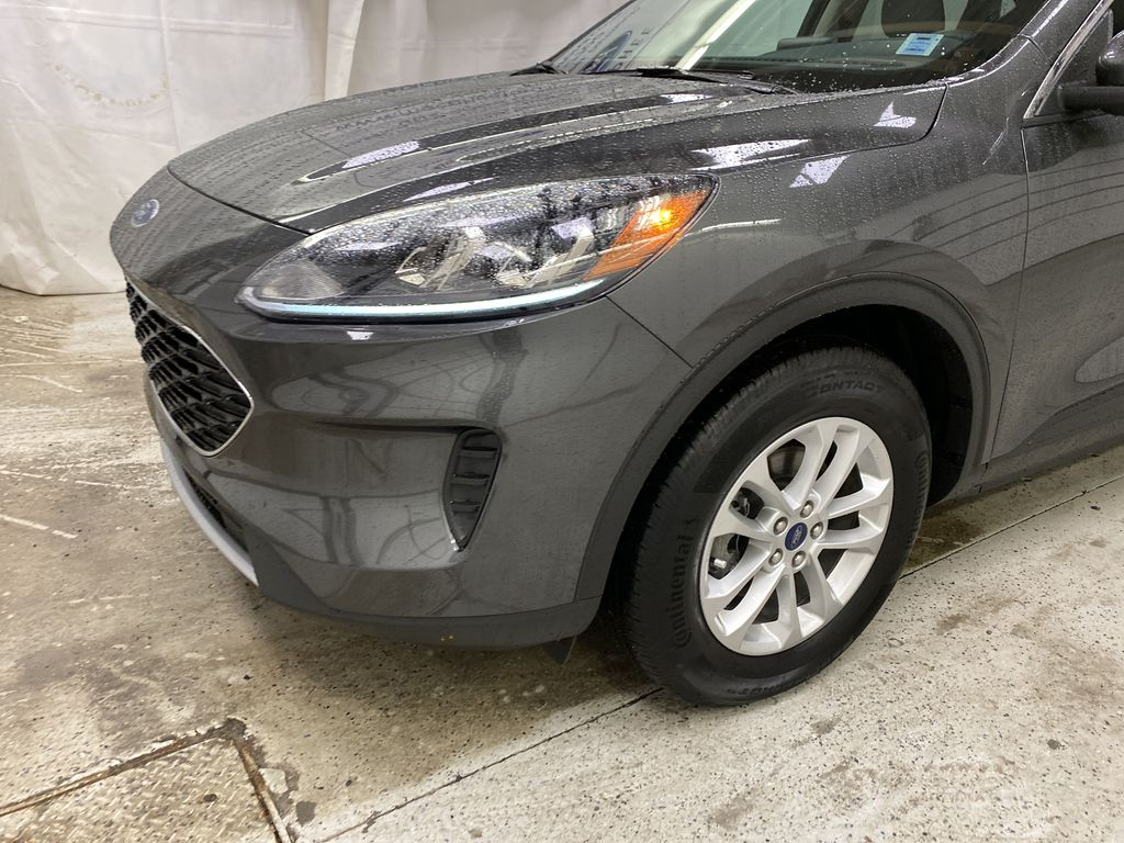 MAGNETIC 2020 Ford Escape Left Front Corner Photo in Dartmouth NS