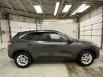 MAGNETIC 2020 Ford Escape Right Side Photo in Dartmouth NS