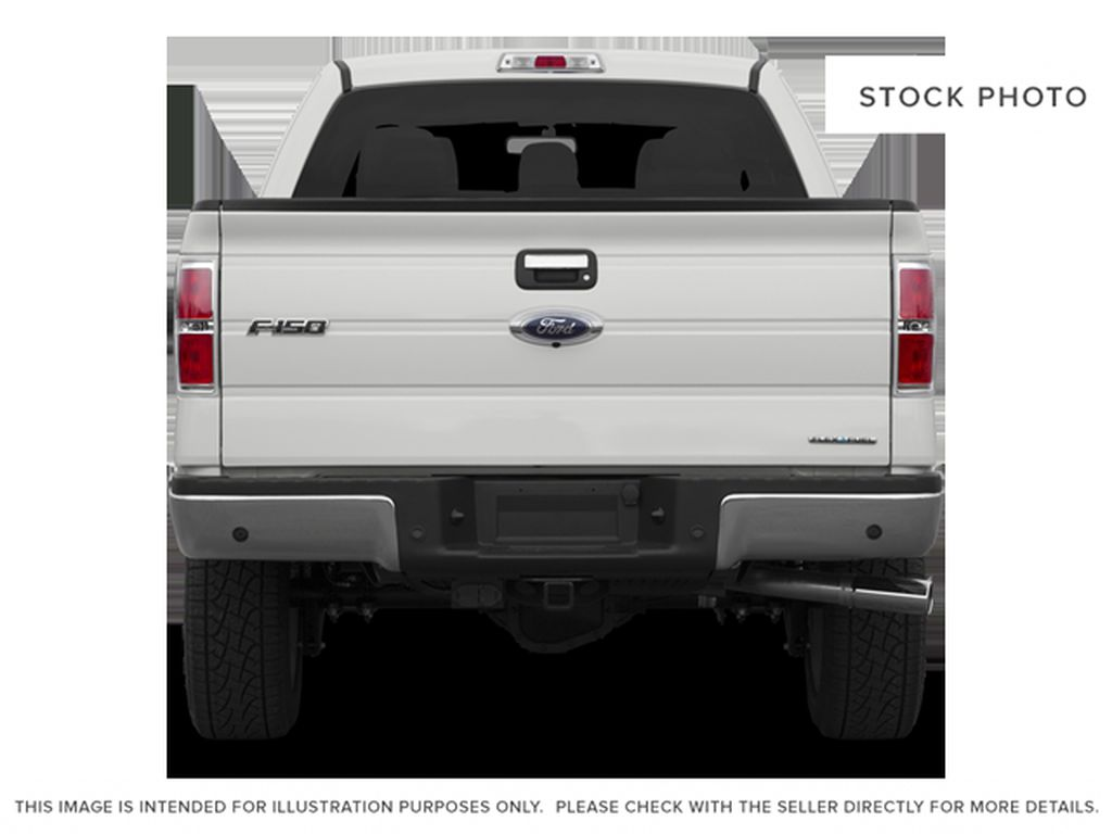 Red[Race Red] 2014 Ford F-150 Rear of Vehicle Photo in Fort Macleod AB