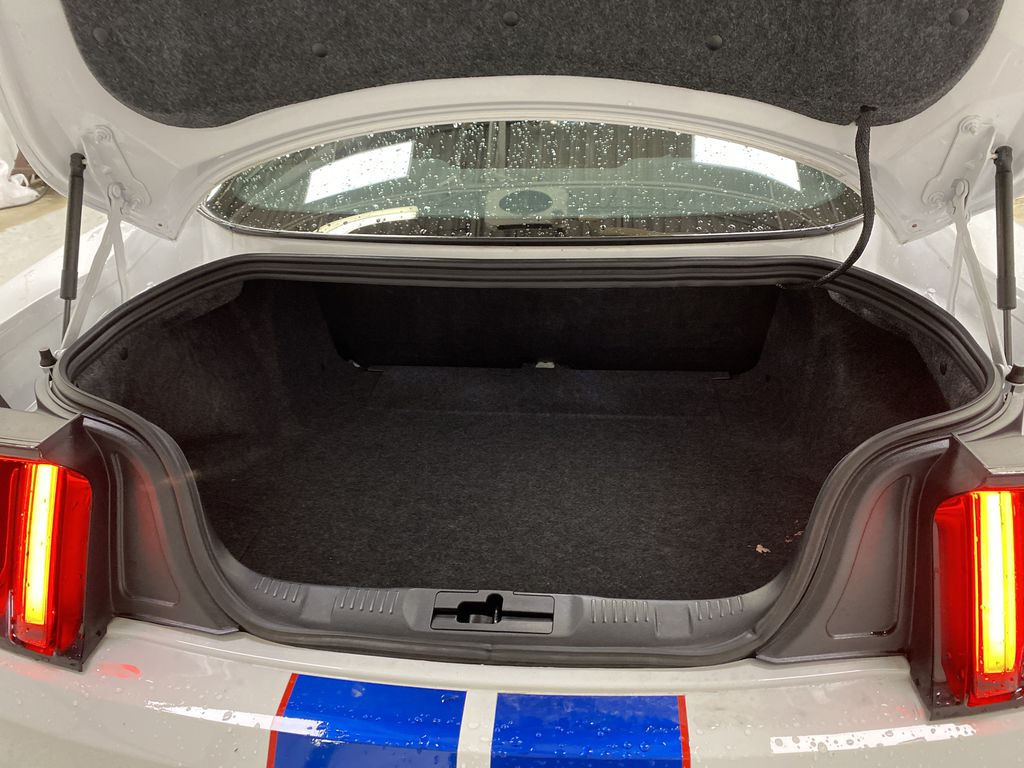 White[Oxford White] 2018 Ford Mustang Trunk / Cargo Area Photo in Dartmouth NS