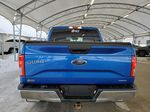 Blue 2015 Ford F-150 Rear of Vehicle Photo in Airdrie AB