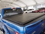 Blue 2015 Ford F-150 Trunk / Cargo Area Photo in Airdrie AB