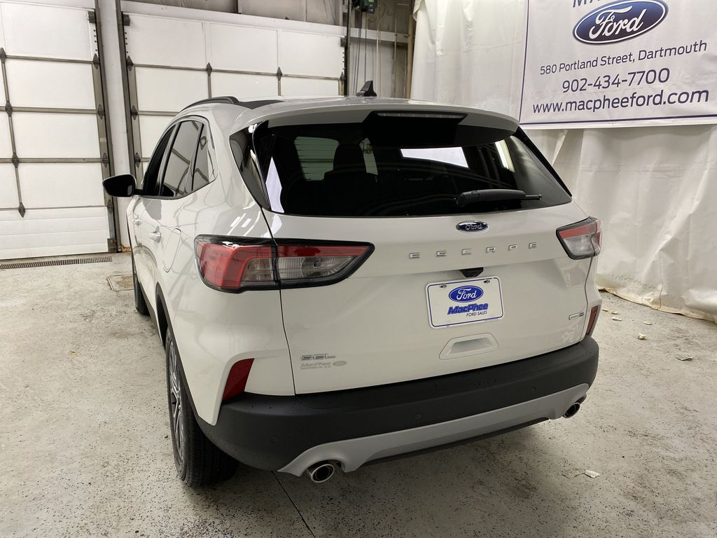 White[Oxford White] 2020 Ford Escape Rear of Vehicle Photo in Dartmouth NS