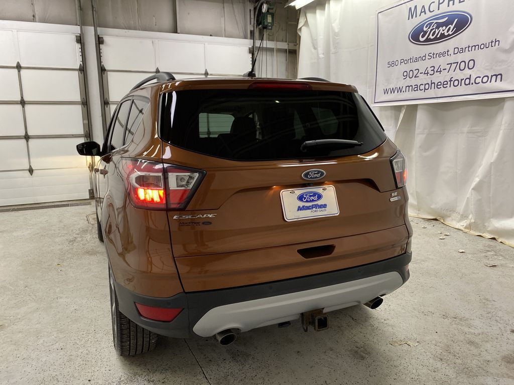 Orange[Canyon Ridge] 2017 Ford Escape Rear of Vehicle Photo in Dartmouth NS