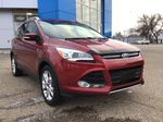 Red 2014 Ford Escape Left Front Head Light / Bumper and Grill in Brooks AB