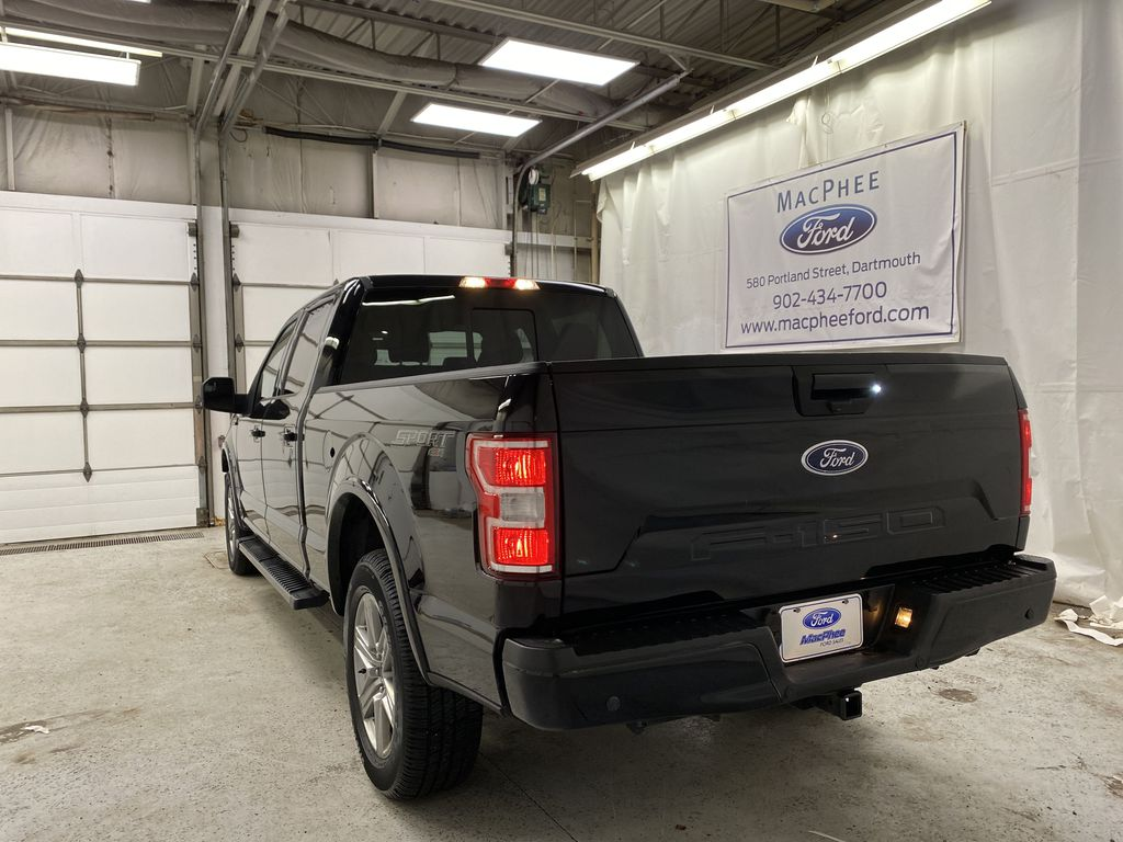 Black[Shadow Black] 2018 Ford F-150 Rear of Vehicle Photo in Dartmouth NS