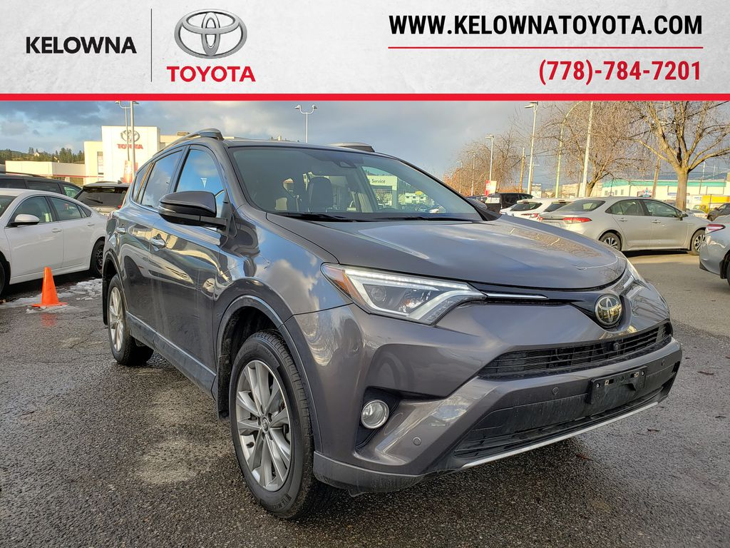 Gray[Magnetic Grey Metallic] 2017 Toyota RAV4