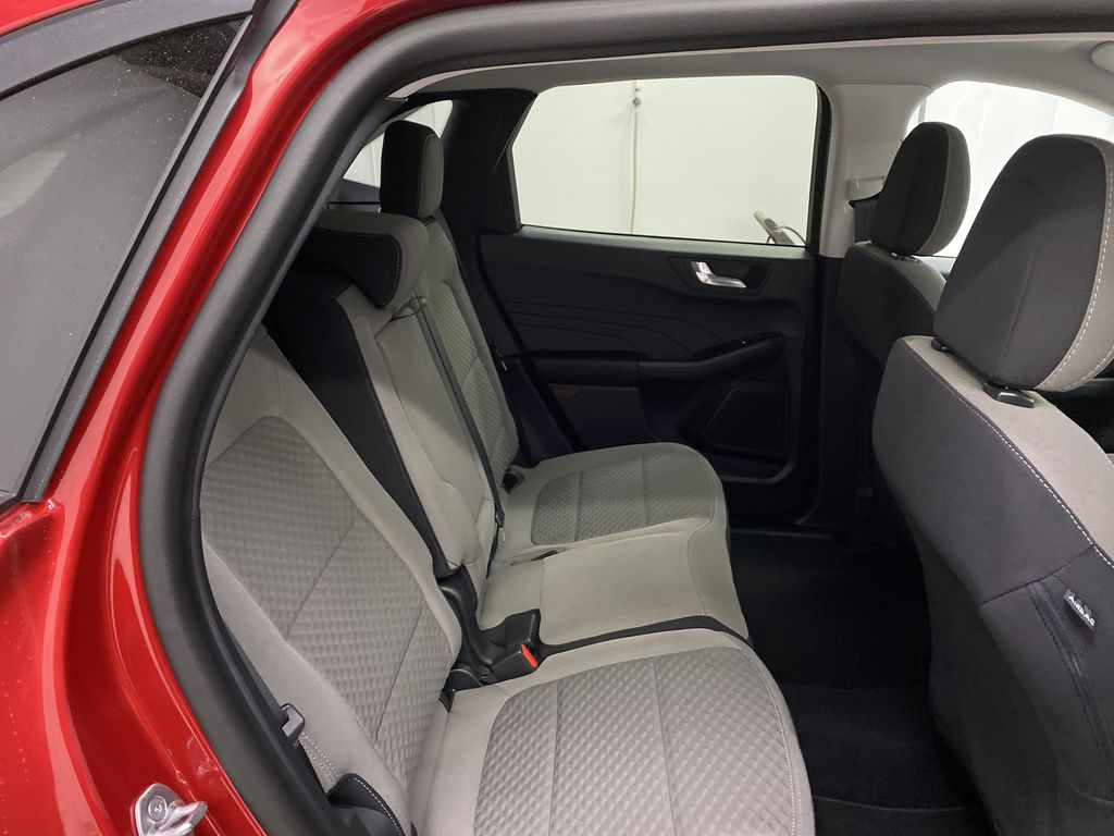 Red[Rapid Red Metallic Tinted Clearcoat] 2021 Ford Escape Right Side Rear Seat  Photo in Dartmouth NS