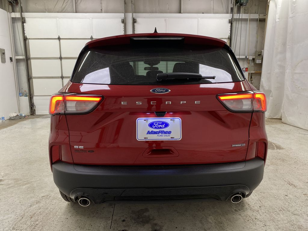 Red[Rapid Red Metallic Tinted Clearcoat] 2021 Ford Escape Rear of Vehicle Photo in Dartmouth NS