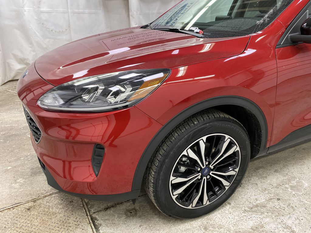 Red[Rapid Red Metallic Tinted Clearcoat] 2021 Ford Escape Left Front Corner Photo in Dartmouth NS