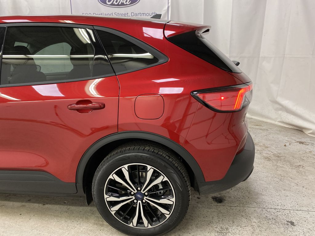Red[Rapid Red Metallic Tinted Clearcoat] 2021 Ford Escape Left Rear Corner Photo in Dartmouth NS