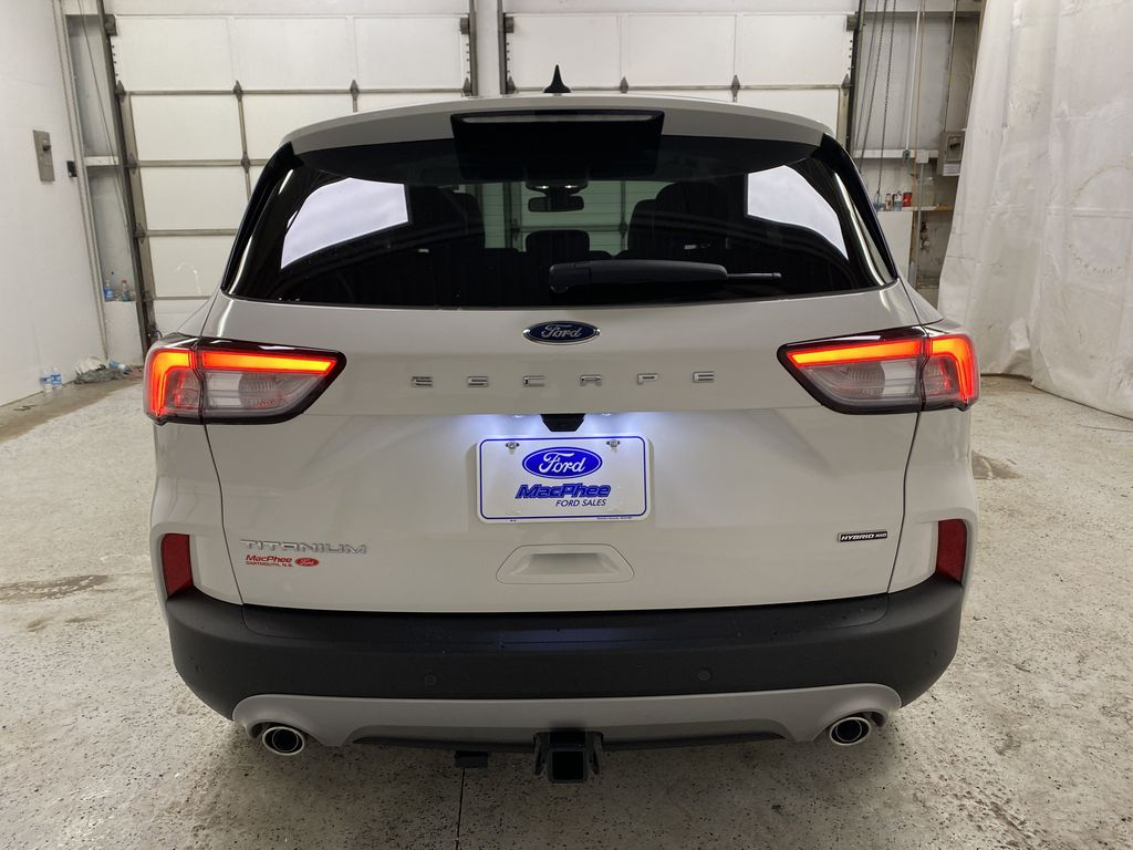 White[Star White Metallic Tri-Coat] 2021 Ford Escape Rear of Vehicle Photo in Dartmouth NS
