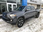 Gray[Cement Grey Metallic] 2019 Toyota Tacoma SR5 Left Front Corner Photo in Canmore AB