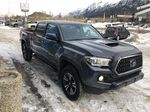 Gray[Cement Grey Metallic] 2019 Toyota Tacoma SR5 Primary Photo in Canmore AB